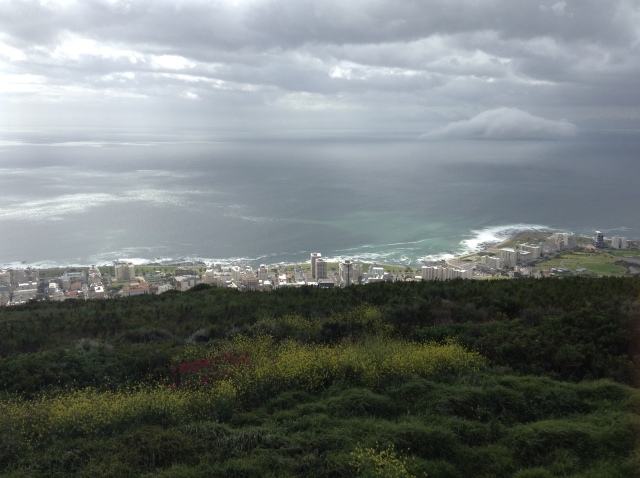 View of Capetown from Signal Hill